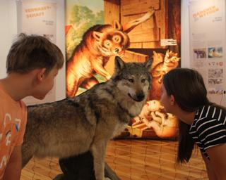 """Auch lohnt der Besuch des historischen Vogelsaals und der Jura-Fossilien in der Ausstellung """"Frankenland am Jurastrand""""."""